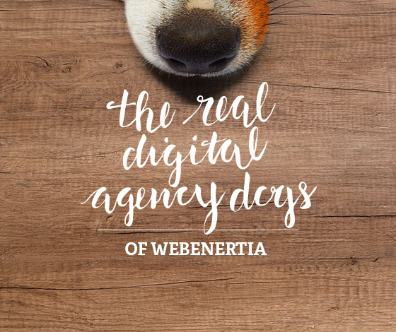 The Real Digital Agency Dogs of WebEnertia
