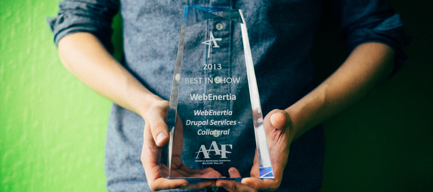 WebEnertia Wins Big at the 2013 ADDY Awards