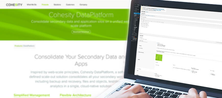 Cohesity WordPress development back end