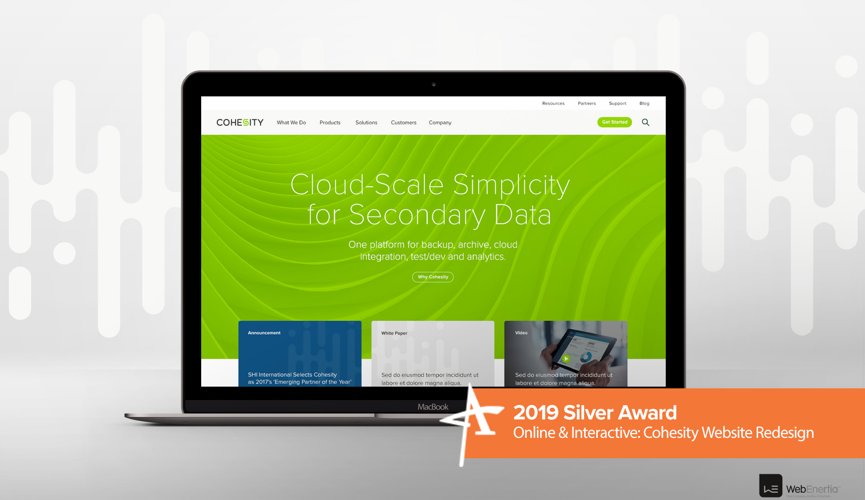 2019 Silver Addy Award - Online & Interactive: Cohesity Website Redesign