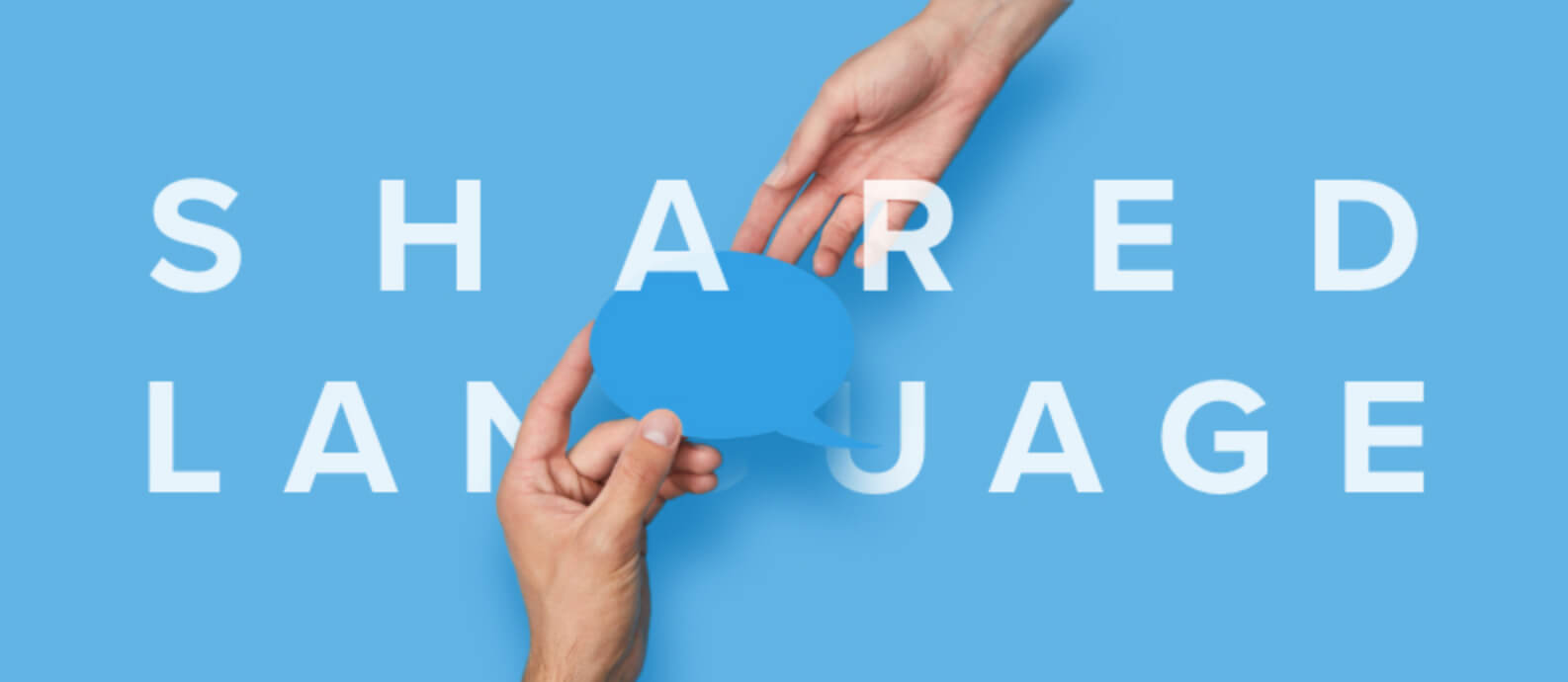 Shared Language With Your Web Design Agency, Web Design San Jose