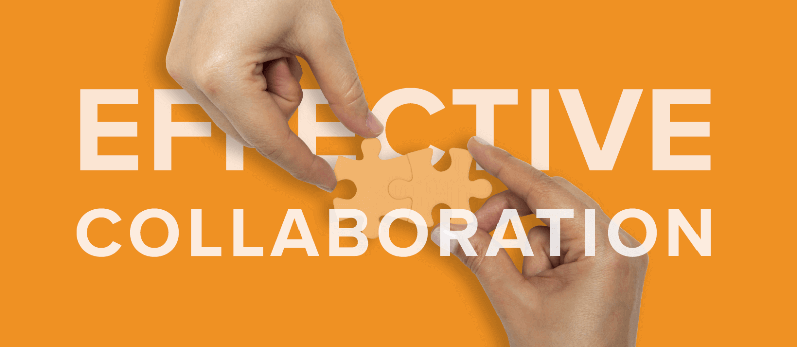 Effective collaboration with Your Web Design Agency
