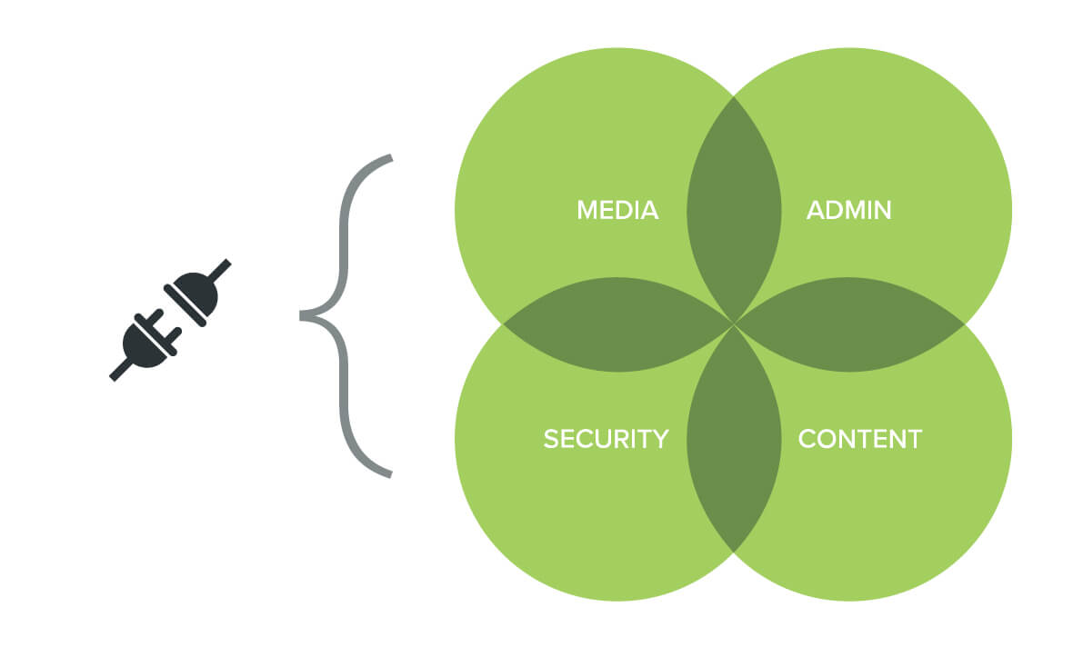 Flexibility to adapt from Media, Admin, Security and Content